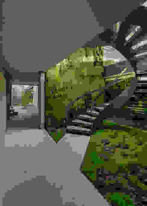 Koridor & Tangga Minimalis Oleh guedes cruz arquitectos Minimalis