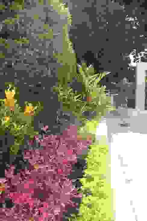 Minimalist style garden by homify Minimalist Concrete