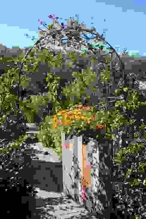 Сады в . Автор – Carla Wilhelm,