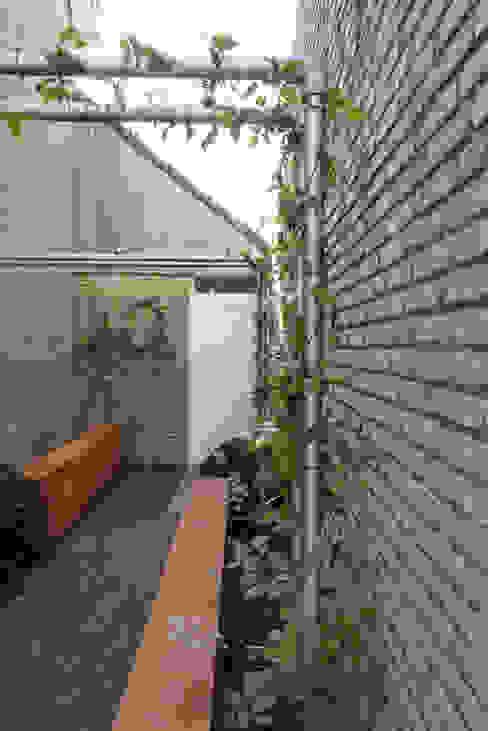 De Rooy Hoveniers의  정원, 모던