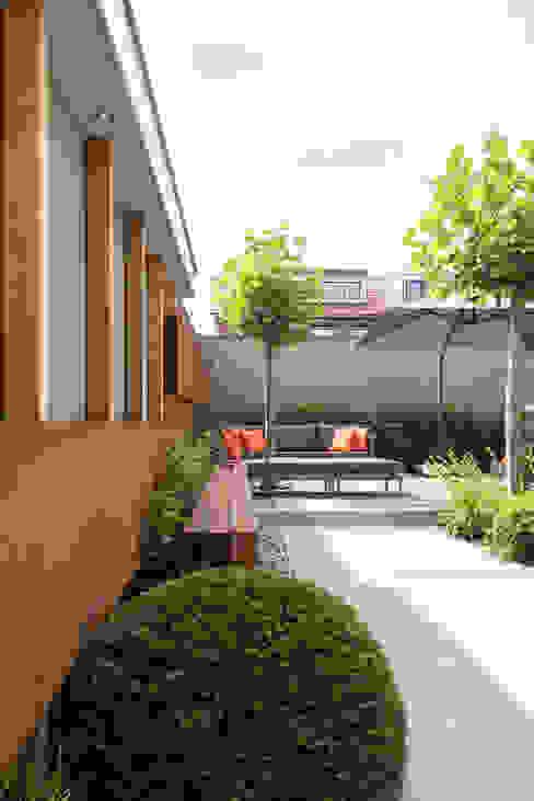 Jardines de estilo moderno de De Rooy Hoveniers Moderno