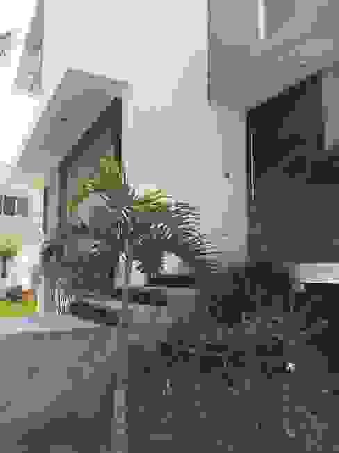 Arki3d Modern houses