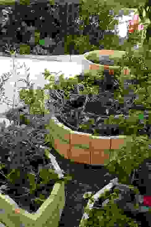 Rustic style garden by Atelier delle Verdure Rustic