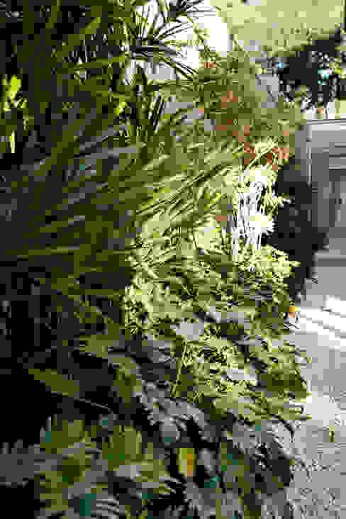 Pinheiros Сад в стиле модерн от Camila Vicari Arquitetura da Paisagem Модерн