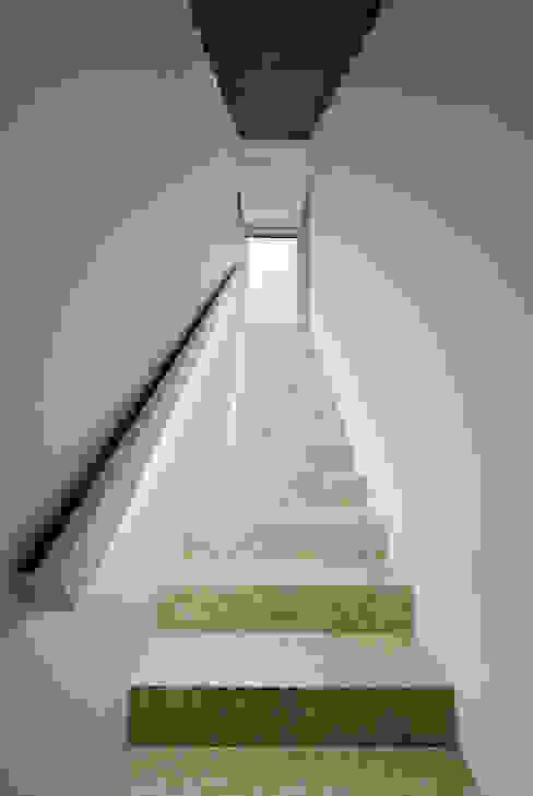 Modern corridor, hallway & stairs by T O H A ARQUITETOS Modern