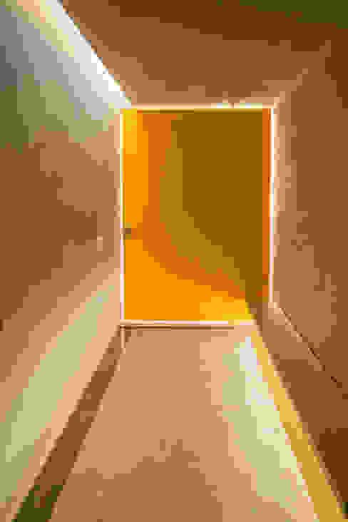 Pasillos, vestíbulos y escaleras modernos de TACO Taller de Arquitectura Contextual Moderno
