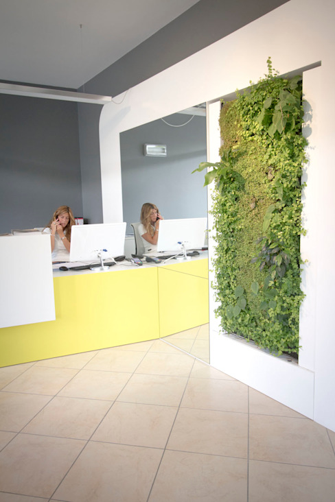 Office: Vertical Gardens and vegetable pictures by homify Сучасний