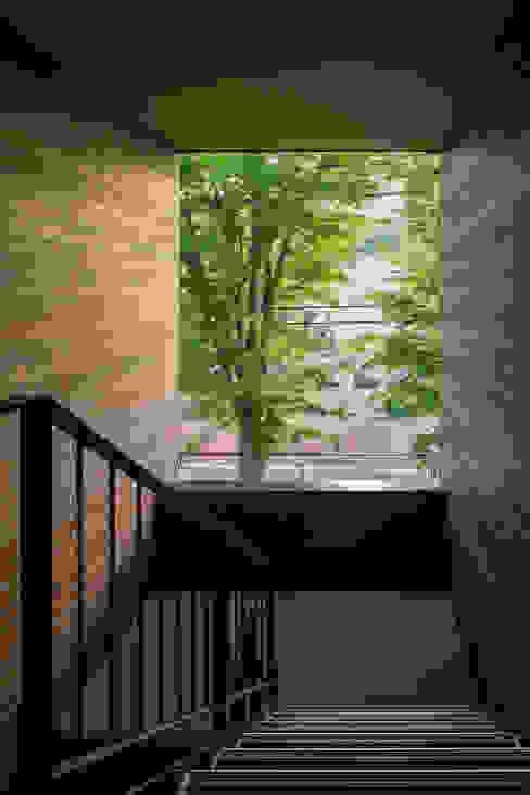 階段 モダンスタイルの 玄関&廊下&階段 の 内田雄介設計室 モダン
