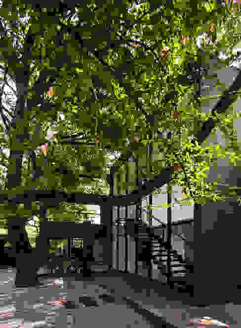 Projeto Alto de Pinheiros - SP Jardins modernos por Alice Martins Flávio Butti Moderno