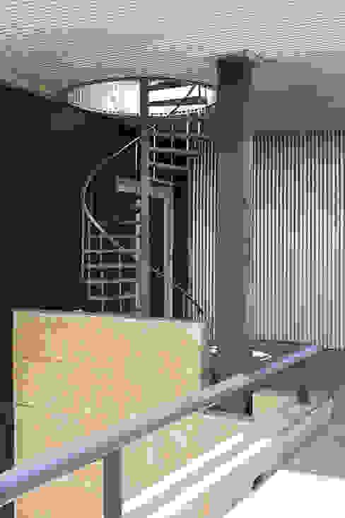 ห้องโถงทางเดินและบันไดสมัยใหม่ โดย DCOOP ARCHITECTS โมเดิร์น