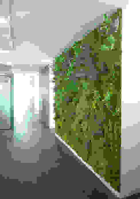 "Barcelona, central del grupo Goretex. 7 Jardines verticales sintéticos ""Muros Frescos"" Paredes y pisos modernos de Muros Frescos Moderno"