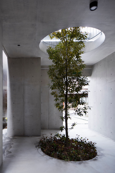 株式会社 藤本高志建築設計事務所 Modern garden Concrete Green