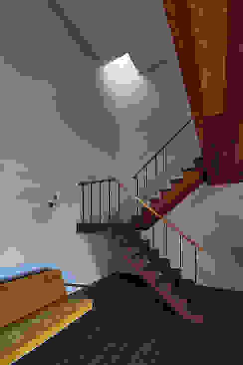 SHIMA モダンスタイルの 玄関&廊下&階段 の 武藤圭太郎建築設計事務所 モダン