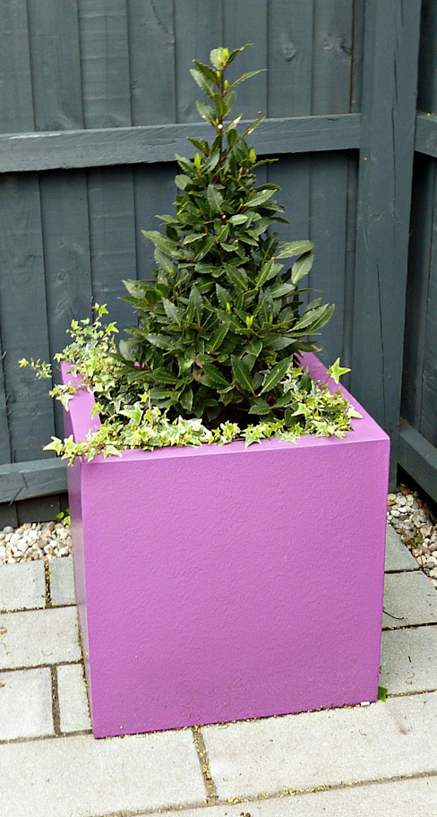 Bay tree cone in fibreglass planter:  Garden by Gardenplan Design