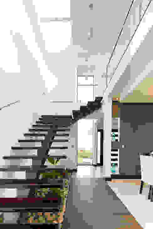 J-M arquitectura Modern Corridor, Hallway and Staircase