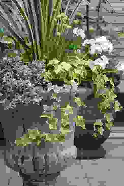 Jardines de estilo  de 庭のクニフジ, Moderno