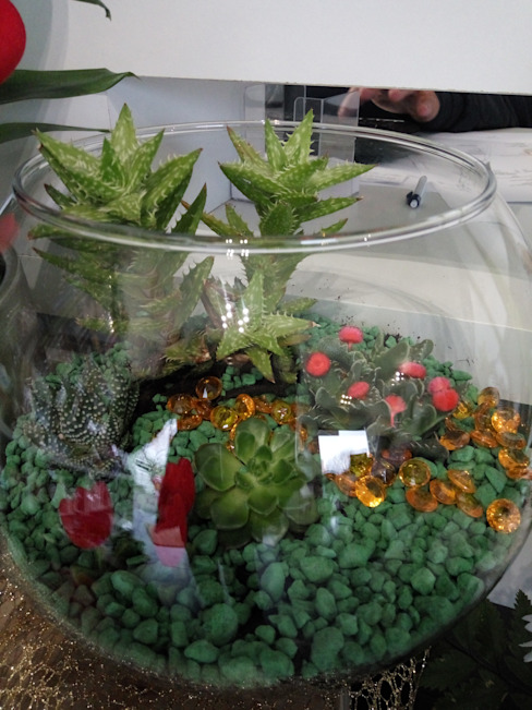 Mini jardim em aquário por Maravilhas do Berço Lda Moderno Vidro