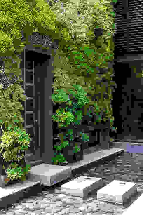 CASA COLINA DEL MIRADOR Jardines de estilo moderno de VERDE360 Moderno