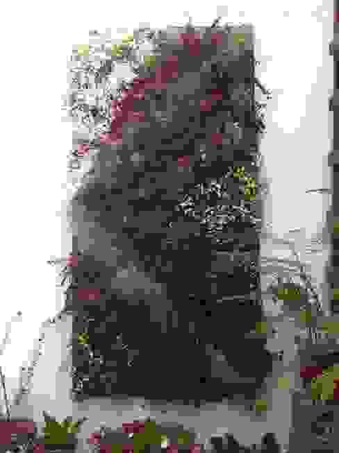 cuadros verdes MANUVERDE JardínAccesorios y decoración