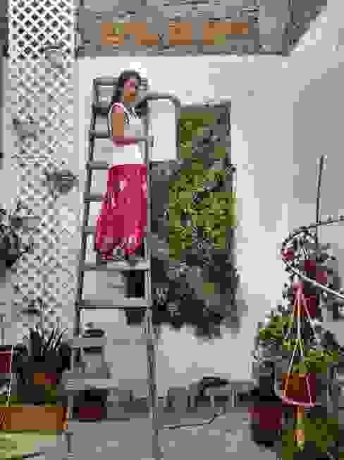 cuadros verdes MANUVERDE Balcones y terrazasPlantas y flores