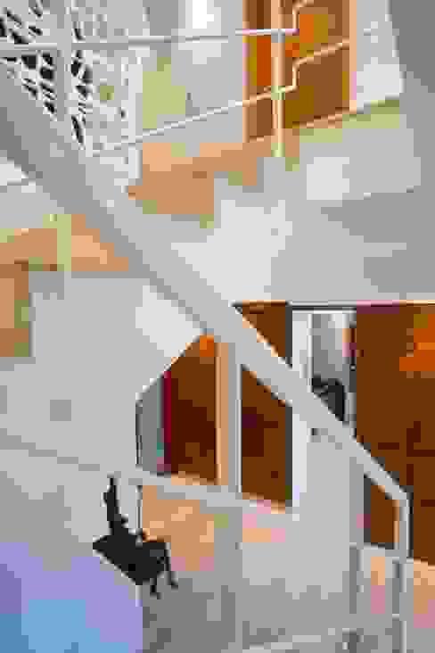 ห้องโถงทางเดินและบันไดสมัยใหม่ โดย Objetos DAC โมเดิร์น
