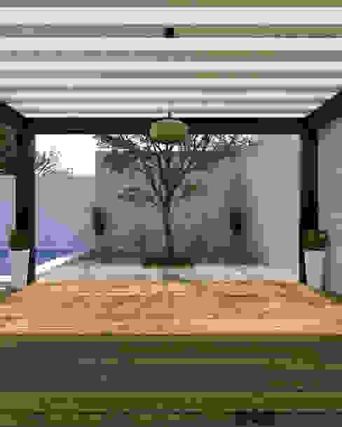 Jardines de estilo  por MOMENTO Arquitectura, Moderno