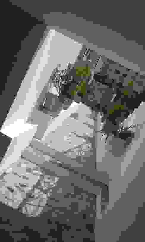 Jardines de estilo  por Erina Cardoso, Ecléctico