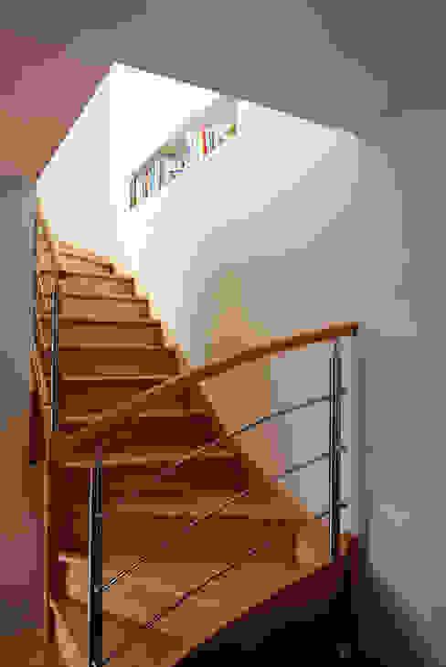 Modern corridor, hallway & stairs by AMNIOS Modern