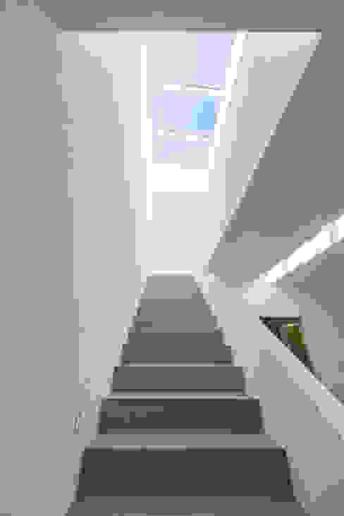 ห้องโถงทางเดินและบันไดสมัยใหม่ โดย KitzlingerHaus GmbH & Co. KG โมเดิร์น ไม้ Wood effect