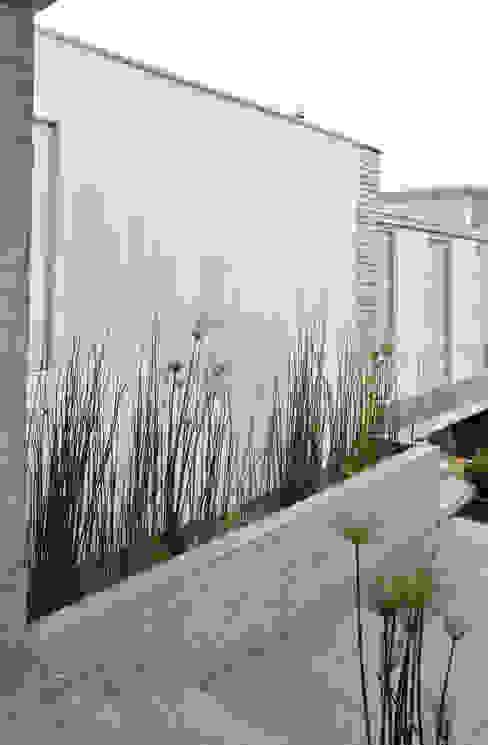 Jardines de estilo asiático de ESTUDIO BASE ARQUITECTOS Asiático