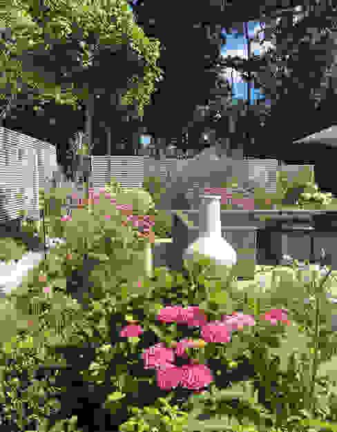 Surrey Garden:  Garden by Elks-Smith Landscape and Garden Design,
