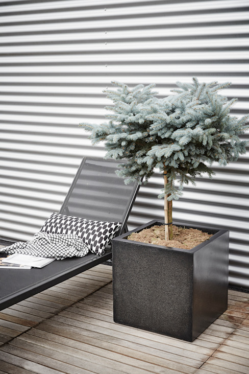 Capi Lux - Planter square Black por Capi Europe Moderno