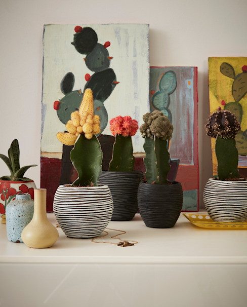 Capi Nature Indoor - Mix of mini pots von Capi Europe Landhaus