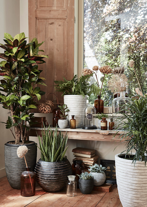Capi Nature Indoor - Mix of pots de Capi Europe Rural