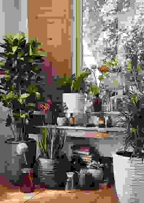 Capi Nature Indoor - Mix of pots by Capi Europe Кантрi