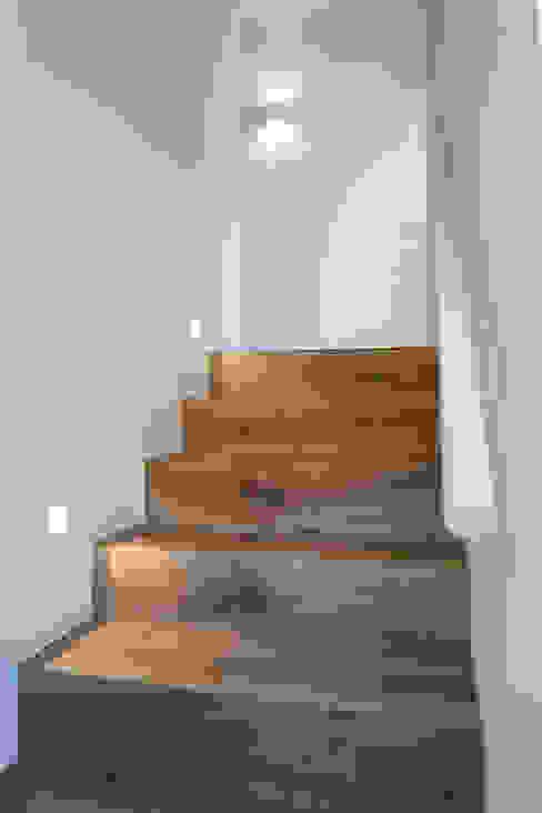 Minimalist corridor, hallway & stairs by dom arquitectura Minimalist