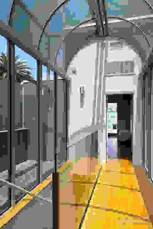 Modern Corridor, Hallway and Staircase by Chibi Moku Modern Wood Wood effect