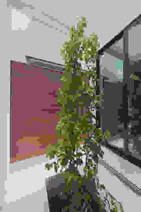 坪庭1 モダンな庭 の 大坪和朗建築設計事務所 Kazuro Otsubo Architects モダン 木 木目調