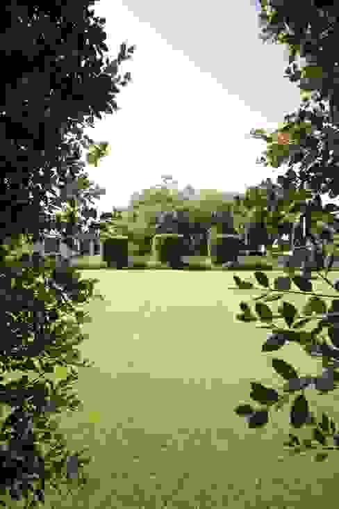 studioSAL_14 Modern garden