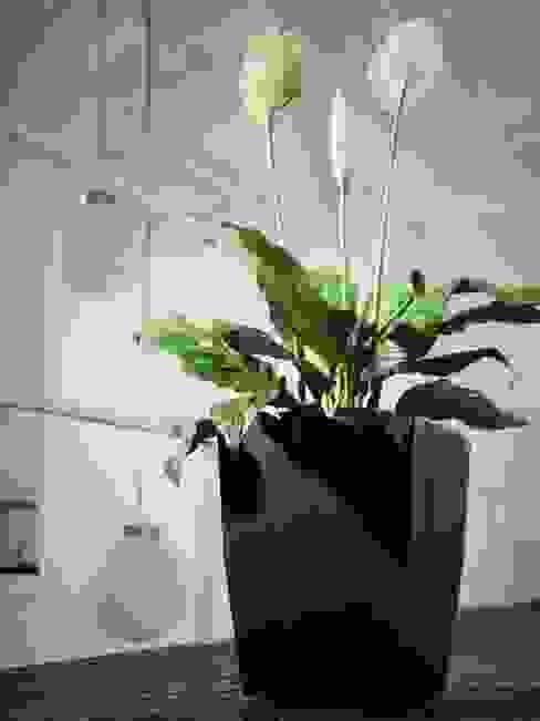сучасний  by Viridis Productos Eco Amigables, Сучасний Пластик