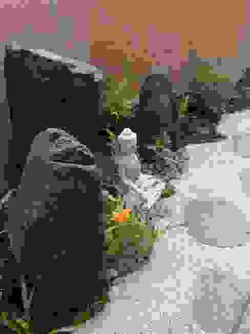 в . Автор – Japanese Garden Concepts,