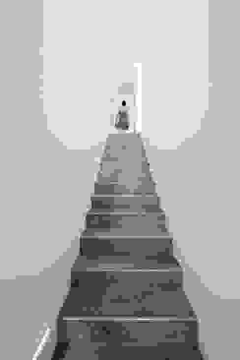 Stairs Minimalistischer Flur, Diele & Treppenhaus von studioarte Minimalistisch