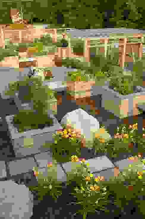 Benchscape Modern Garden by Lex Parker Design Consultants Ltd. Modern