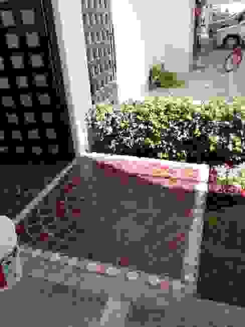 Diseño de Jardín y Andador Padilla Pasillos, vestíbulos y escaleras modernos de Arqca Moderno