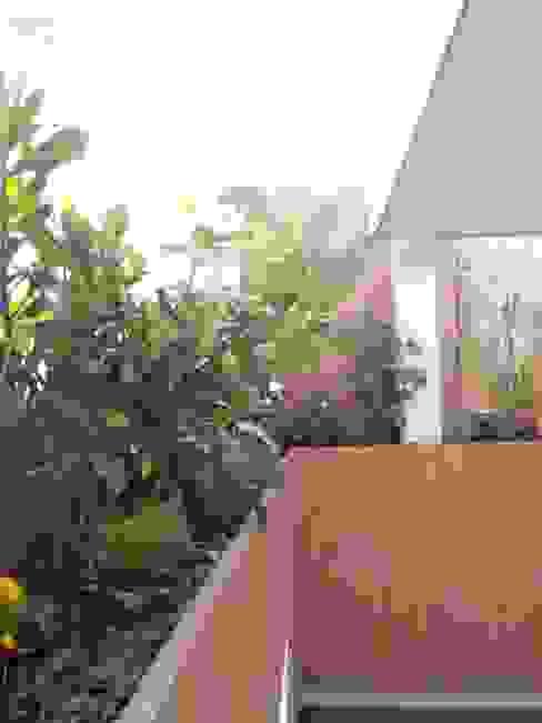 Сад в стиле модерн от Arqca Модерн