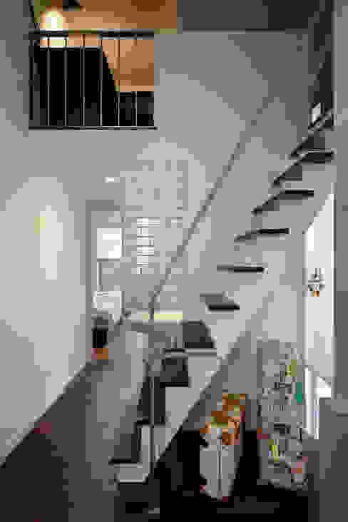 「水と光のある暮らし」吉祥寺のプールハウス 階段 モダンな 家 の TAMAI ATELIER モダン