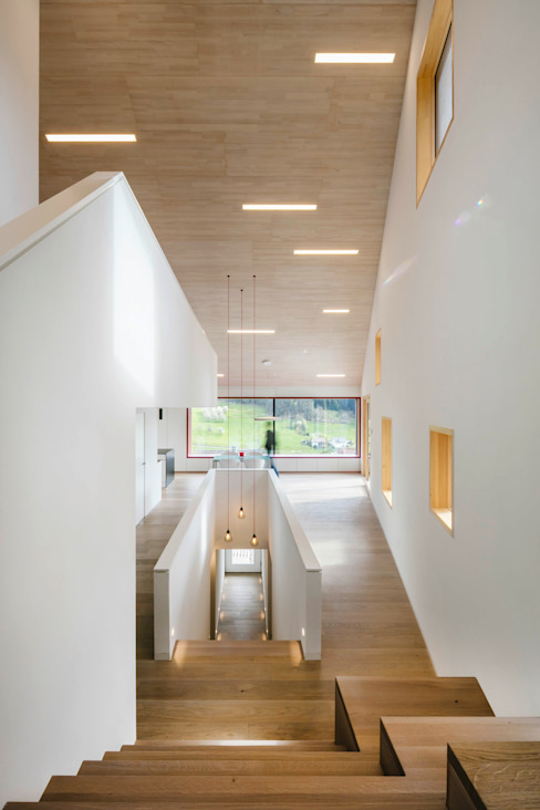 Cloud Cuckoo House Modern Corridor, Hallway and Staircase by ÜberRaum Architects Modern