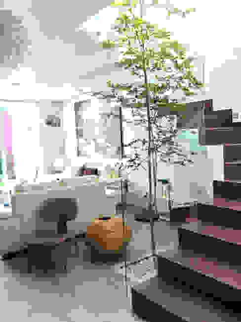 Privada Paraíso Base-Arquitectura Pasillos, vestíbulos y escaleras minimalistas