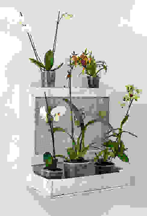 christian hacker fotodesign Balconies, verandas & terraces Plants & flowers Wood White
