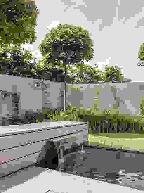 Modern style gardens by meier architekten zürich Modern